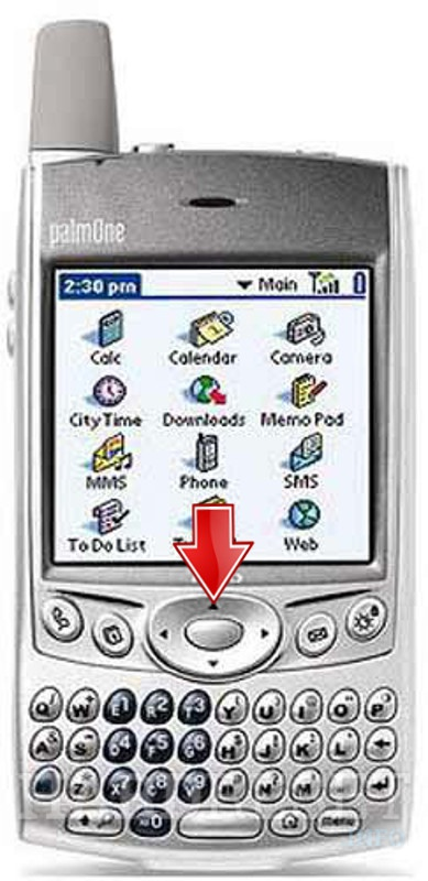 Wipe data on PALM Treo 600