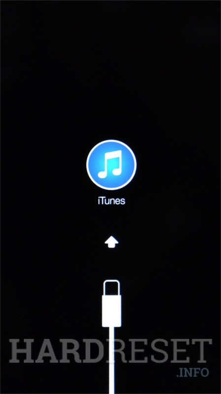 Master-Reset APPLE iPod Classic 5th Generation