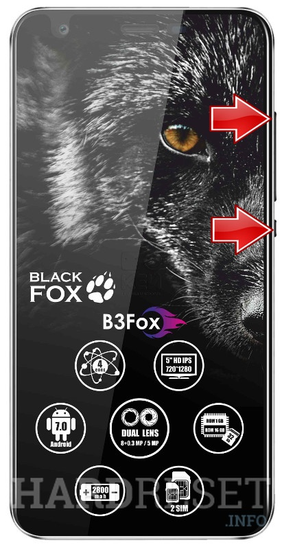 Permanently delete data from BLACK FOX B3
